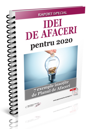 Idei de afaceri pentru 2020. 7 exemple insotite de Planul de Afaceri
