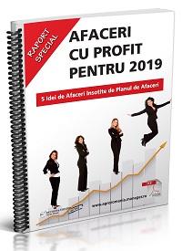 Afaceri cu Profit pentru 2019 - 5 Idei de Afaceri insotite de Planul de Afaceri