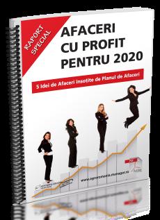 Afaceri cu Profit - 5 Idei de Afaceri insotite de Planul de Afaceri