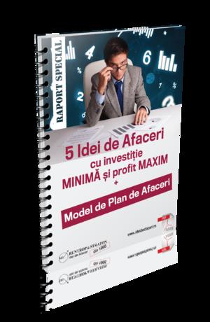 5 Idei de Afaceri cu investitie MINIMA si profit MAXIM + Model de Plan de Afaceri